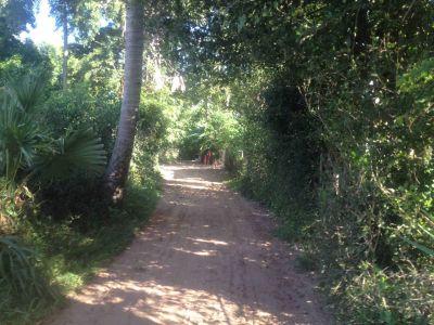 Siem Reab, Siem Reap | Land for sale in  Siem Reap Siem Reab img 2
