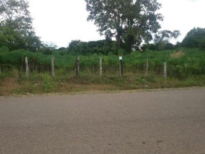 | Land for sale in Pailin  img 1