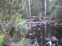 Native Bushland – 3.45 Acres