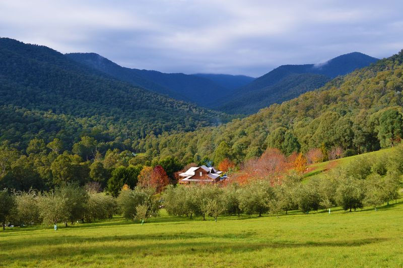 Total privacy in a pristine location:  A hobby farm like no other