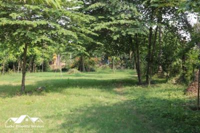 Puk Ruessei, Kandal | Land for sale in Khsach Kandal Puk Ruessei img 2