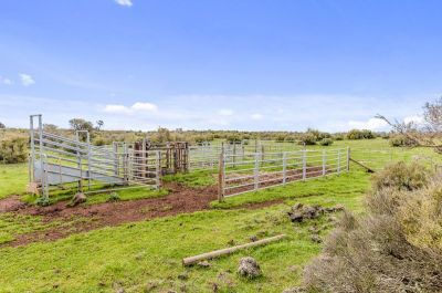 Vacant Land - A Great Opportunity Awaits - 130 acres - 53 ha (approx.)