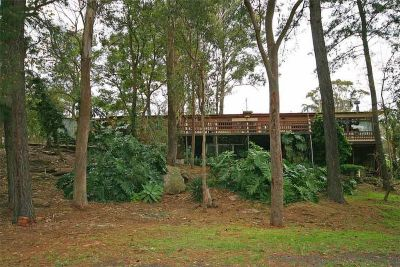 excellent value! entry level acreage in prestige dural on pretty acres with large tradepersons shed.