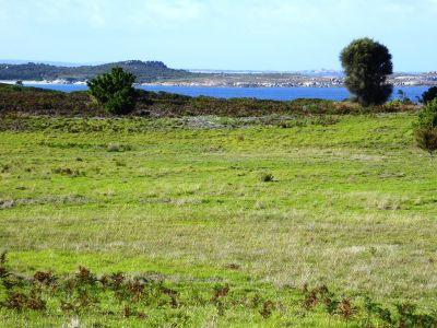 Lot 40 Thunder and Lightning Road, Cape Barren Island, Flinders Island