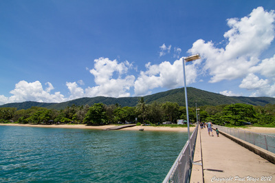 37 Muller St , Palm Cove