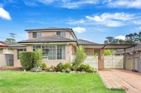 46 Pritchard Ave Hammondville, Nsw