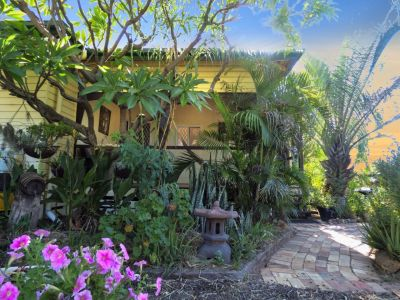 A Charming Home in a Wild Tropical Oasis