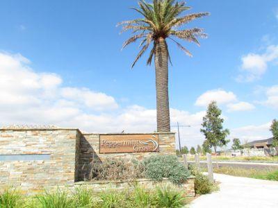 12 Burswood Circuit, Melton West