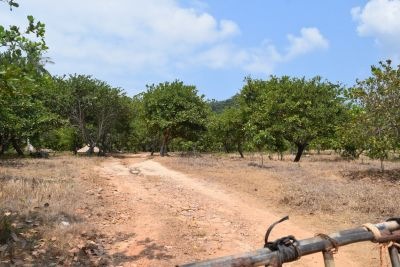Kep | Land for sale in Kep  img 0