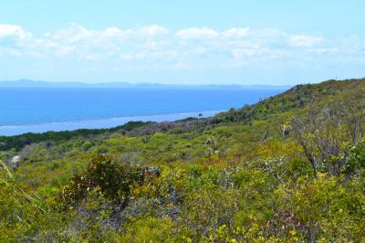 Land for sale in Southside HORN ISLAND