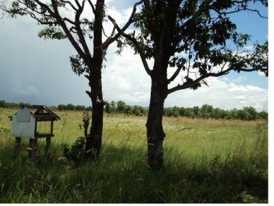 Pak Khlang | Land for sale in Mondol Seima Pak Khlang img 0