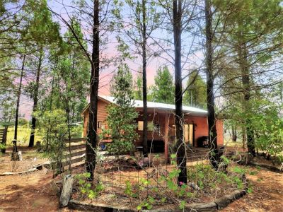 The Ultimate Cabin Lifestyle - minutes to town