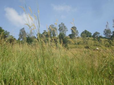 Sangkat Bei | Land for sale in Sihanoukville Sangkat Bei img 1