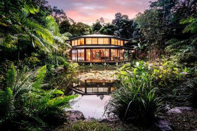 Exotic Tropical Rainforest Heaven