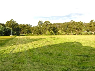 Fertile 4 ½ Acres