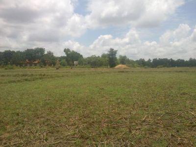 Veal Pong | Land for sale in Odongk Veal Pong img 6