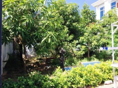 Preaek Pra, Phnom Penh | House for rent in Chbar Ampov Preaek Pra img 7