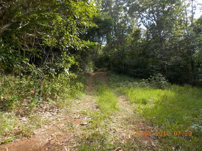 LOT 2 Collingwood Road, Cooktown
