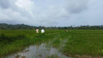 Ream, Sihanoukville | Land for sale in Prey Nob Ream img 2