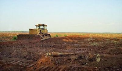 | Land for sale in Phnum Proek  img 0
