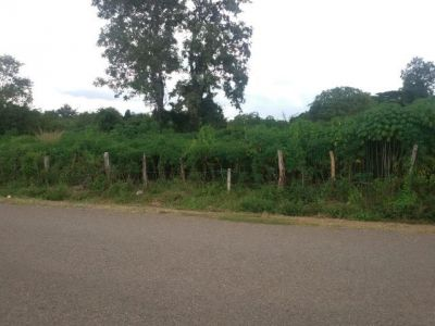 | Land for sale in Pailin  img 3