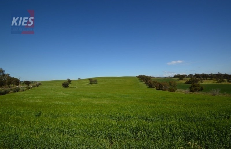 COCKATOO VALLEY - 8 Acres, only 8 Minutes from Gawler!!