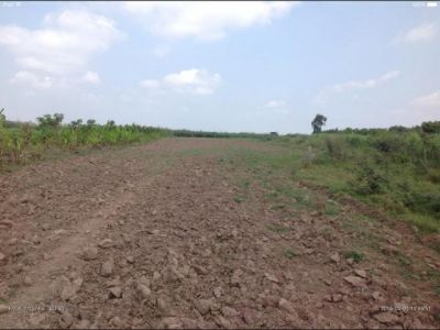 Chheu Teal | Land for sale in Banan Chheu Teal img 6