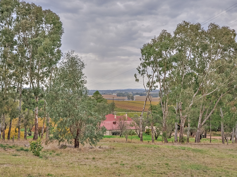LYNDOCH - Stunning Acreage with Exceptional Views
