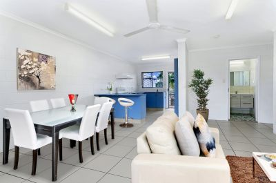 Renovated Immaculate Bargain City Apartment!