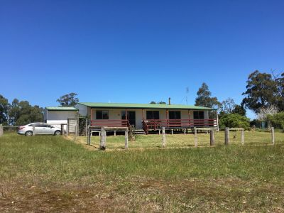 LARGE OPEN PLAN HOME ON 4 ACRES