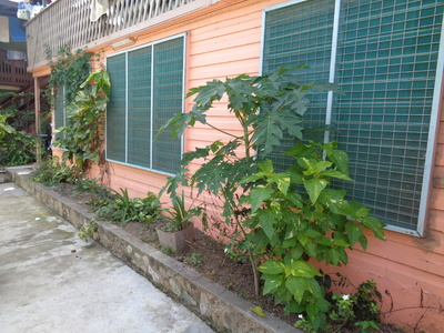 Duplex for rent in Port Moresby Ensisi Valley