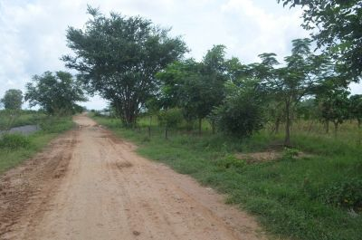 S'ang Phnum, Kandal | Land for sale in S'ang S'ang Phnum img 0