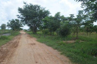 S'ang Phnum, Kandal | Land for sale in S'ang S'ang Phnum img 0