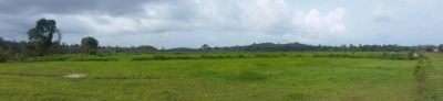 Ream, Sihanoukville | Land for sale in Prey Nob Ream img 7