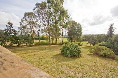 Five Acres and Fantastic Country Home!