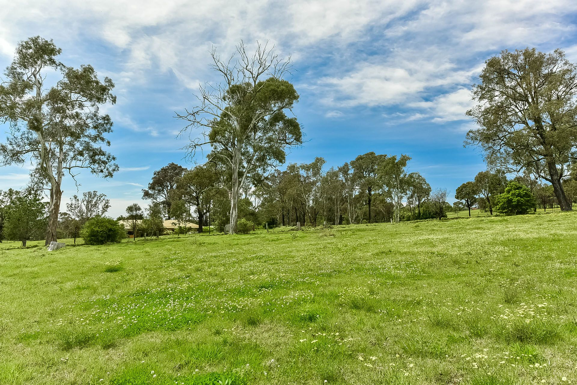 Lot 171, 40 Marion Street, Thirlmere