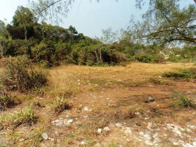 Kaoh Rung, Sihanoukville | Land for sale in Sihanoukville Kaoh Rung img 9