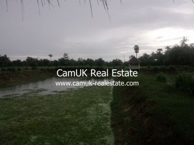 Puok, Siem Reap | Land for sale in Puok Puok img 3