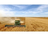 Prime Hard Wheat Growing Country