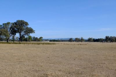 LOOKING FOR LAND - 46 ACRES