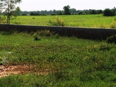 Kandaek, Siem Reap | Land for sale in Prasat Bakong Kandaek img 3