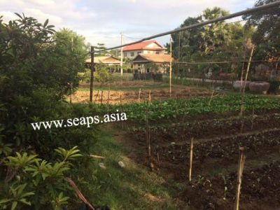 Boeung Reang, Phnom Penh | Land for sale in Daun Penh Boeung Reang img 2