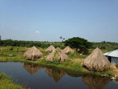 | Land for sale in Memot  img 1