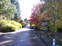 Adina Lodge - Location! Lifestyle! Income!