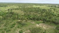 40 Acres Freehold LAND - Flinders Highway