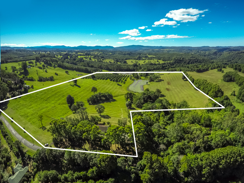 45 Acres In The Byron Bay Hinterland