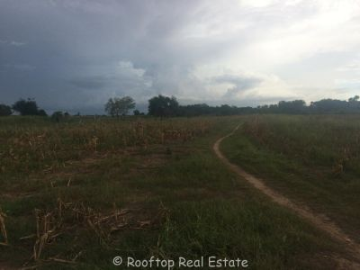 Kandal | Land for sale in Kaoh Thum  img 0