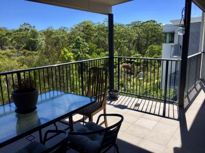 Buderim's Best Investment Opportunity