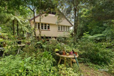 TREE HOUSE LIVING