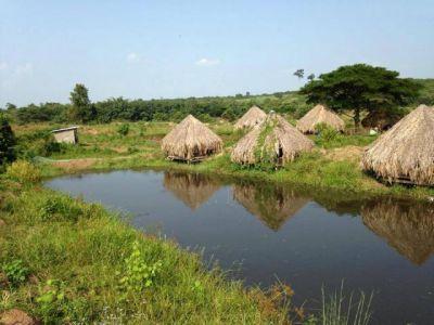 | Land for sale in Memot  img 0